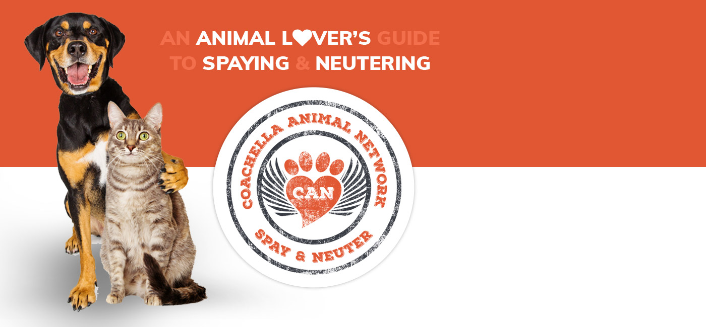 Animal Lovers Guide